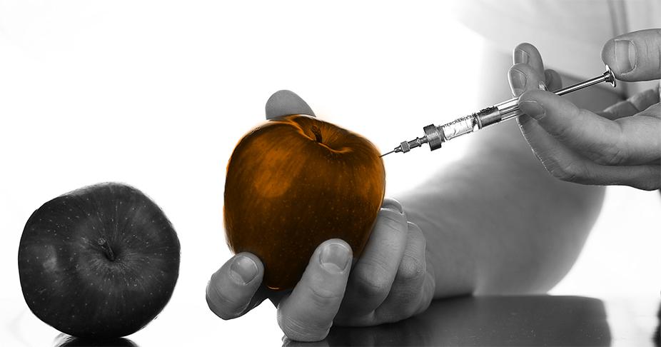 Food fraud (Neu!) und food defence