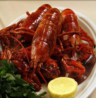 2019 EFC Atlantic Region LobsterFest