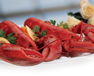 2017 EFC Atlantic Region LobsterFest