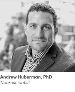 AndrewHuberman