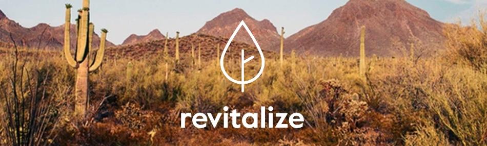 revitalize 2017