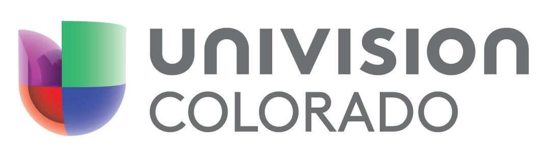 Univision Horizontal logo grey
