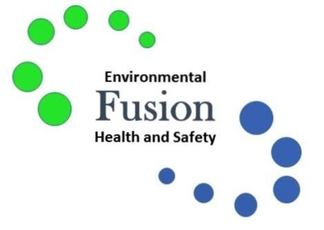 Fusion Safety and Business Solutions