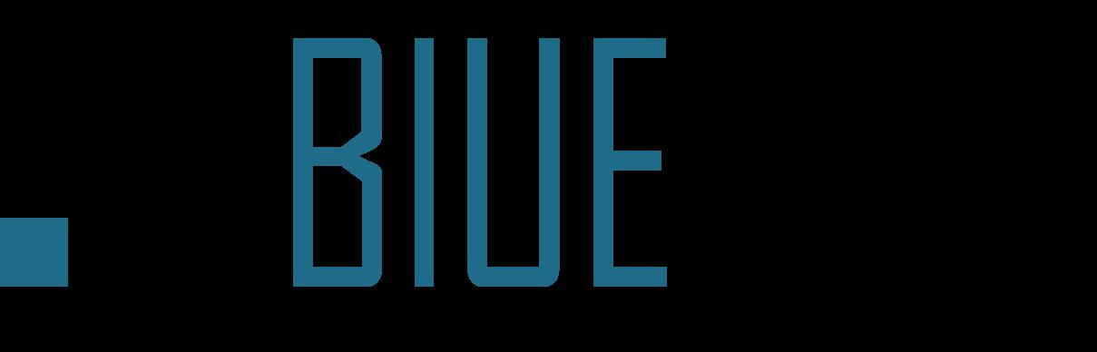 BlueRISC Inc.,_logo_whitebackground