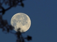 Spring Full Moon Hikes 2017