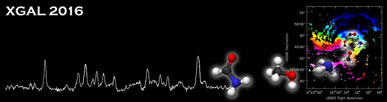 Molecular Gas in Galactic Environments