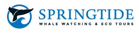 Spring Tide Logo horizontal
