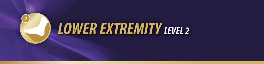 Lower Extremity Level 2