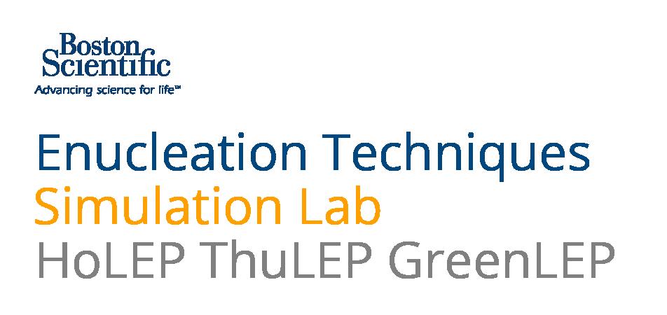 Laser Prostate Enucleation Techniques
