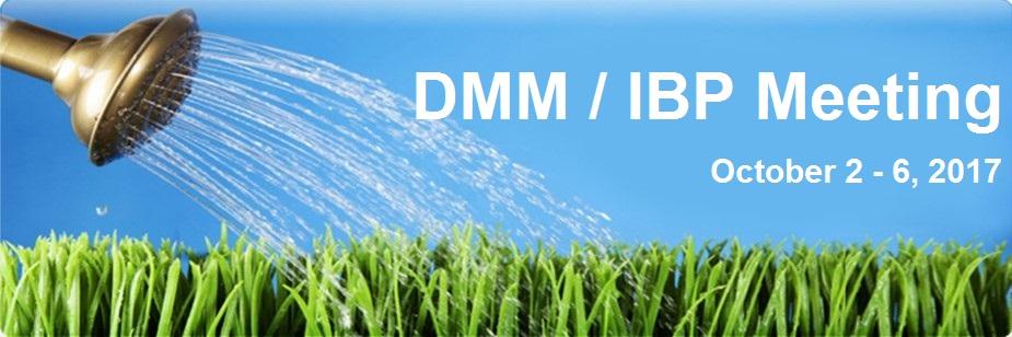 DMM / IBP Meeting 2017