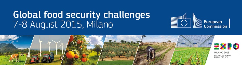 Global food security challenges