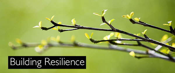 Resilience in our First Responder Community: A Wellness Event