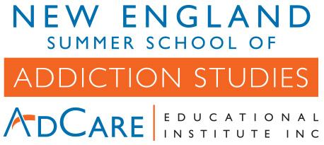 NE Summer School Logo
