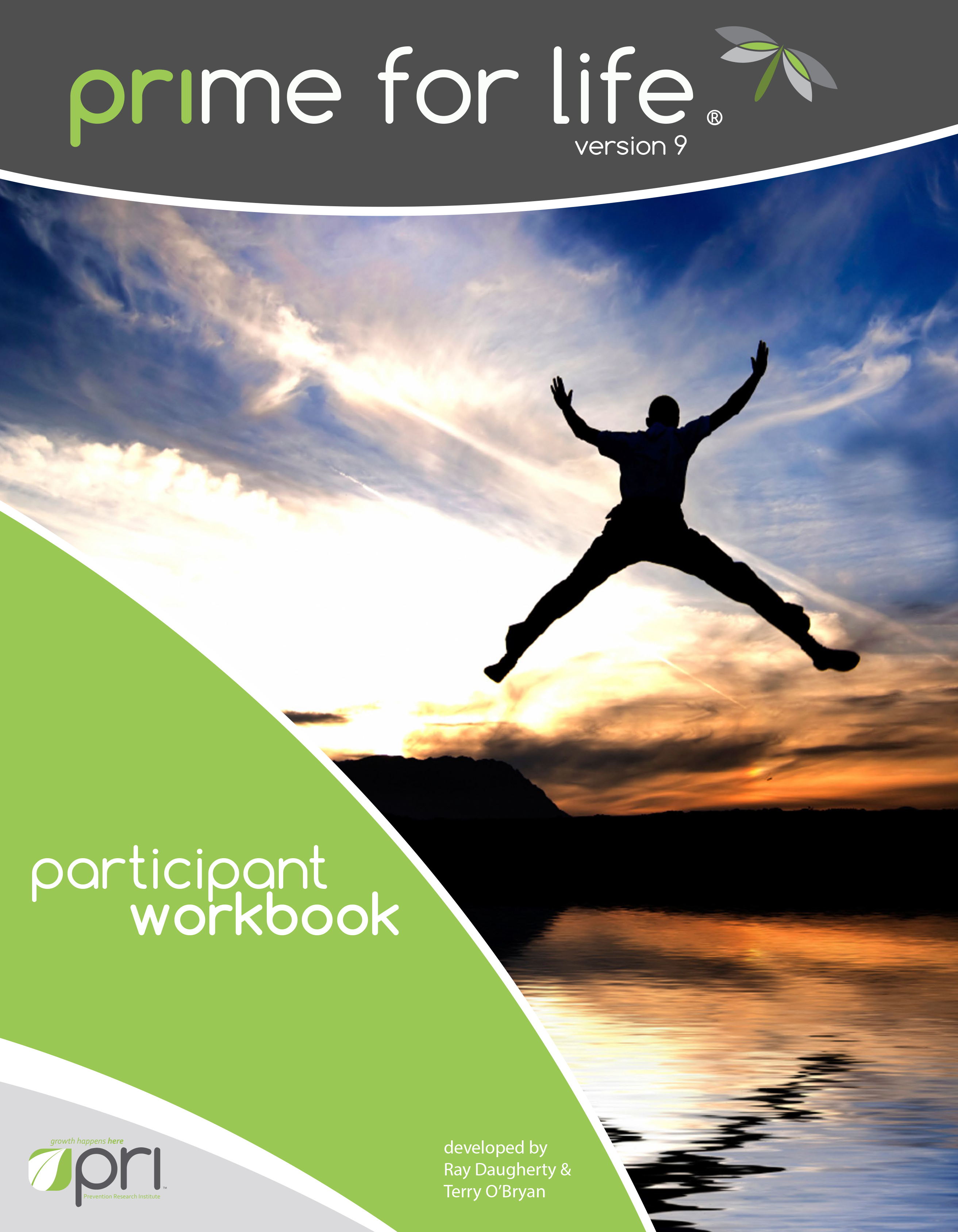 V9 Workbook cover