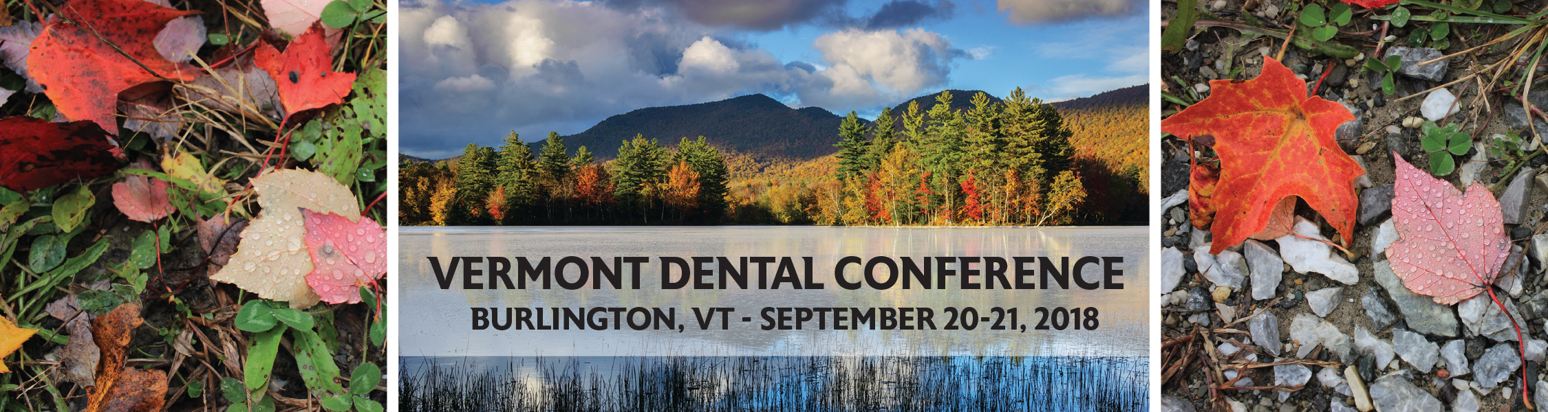 Vermont Dental Conference