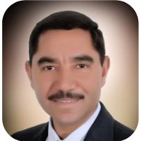 Mohamed Zahran.jpg
