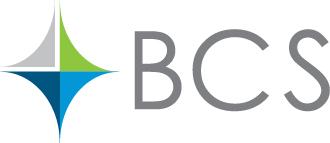 BCS%20Financial[1]