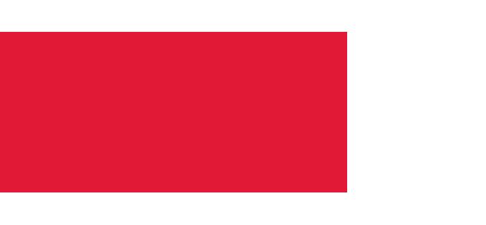 CGI-2017-silver