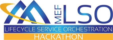 Euro18 LSO Hackathon