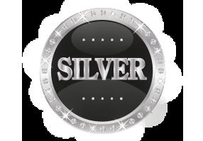 SPONSORSHIP_logo_silver
