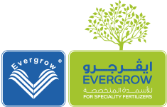 SPONSORSHIP_LOGOS_EVERGROW