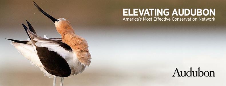Audubon Convention 2017