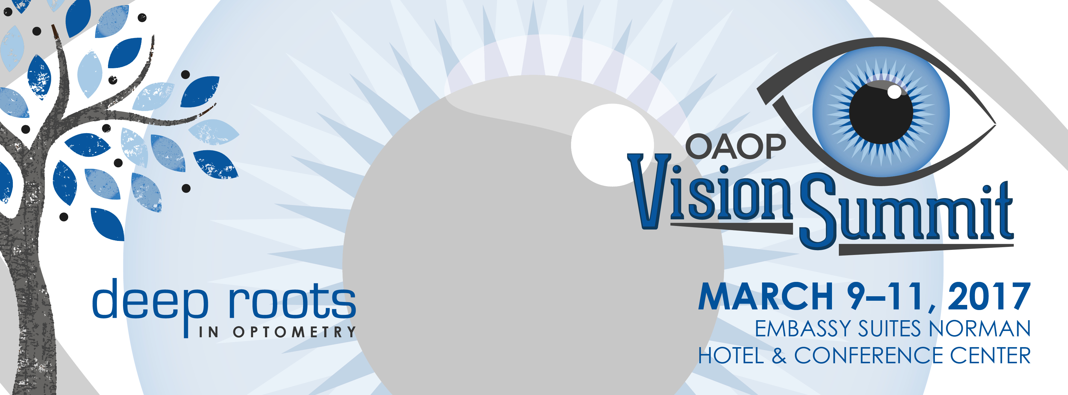2017 OAOP Vision Summit