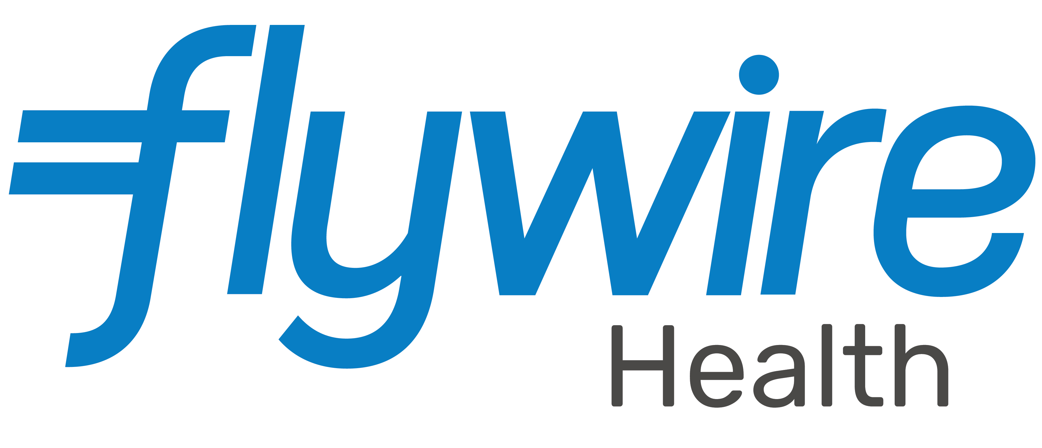 Flywire Health Mark High Res