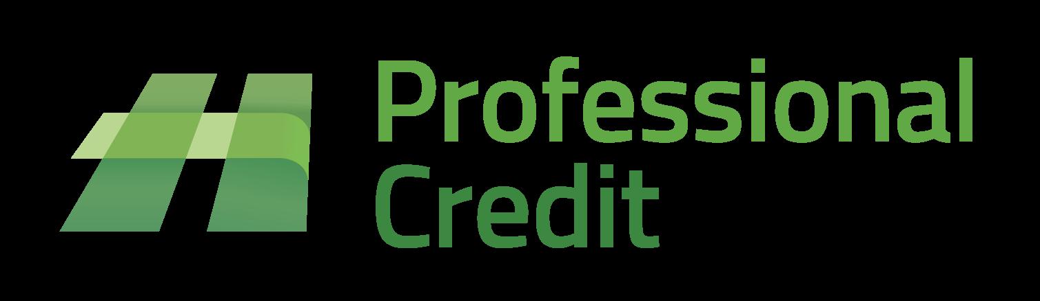 professional-credit (4)