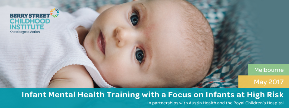 Introductory Infant Mental Health Training with a focus on Infants at High Risk 2017