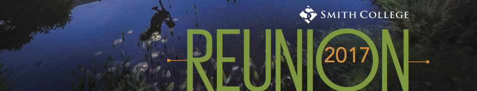Reunion 2017 Page Header