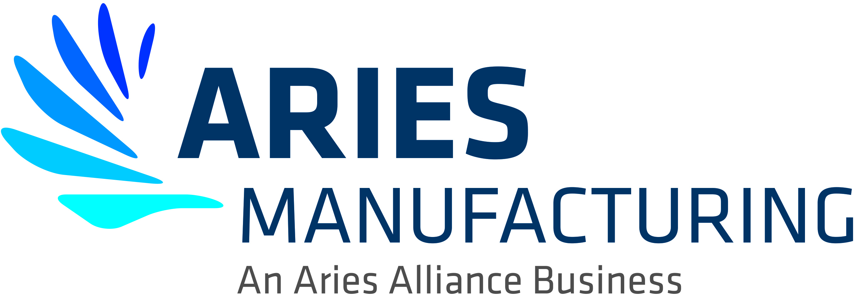 Aries Manufacturing Business