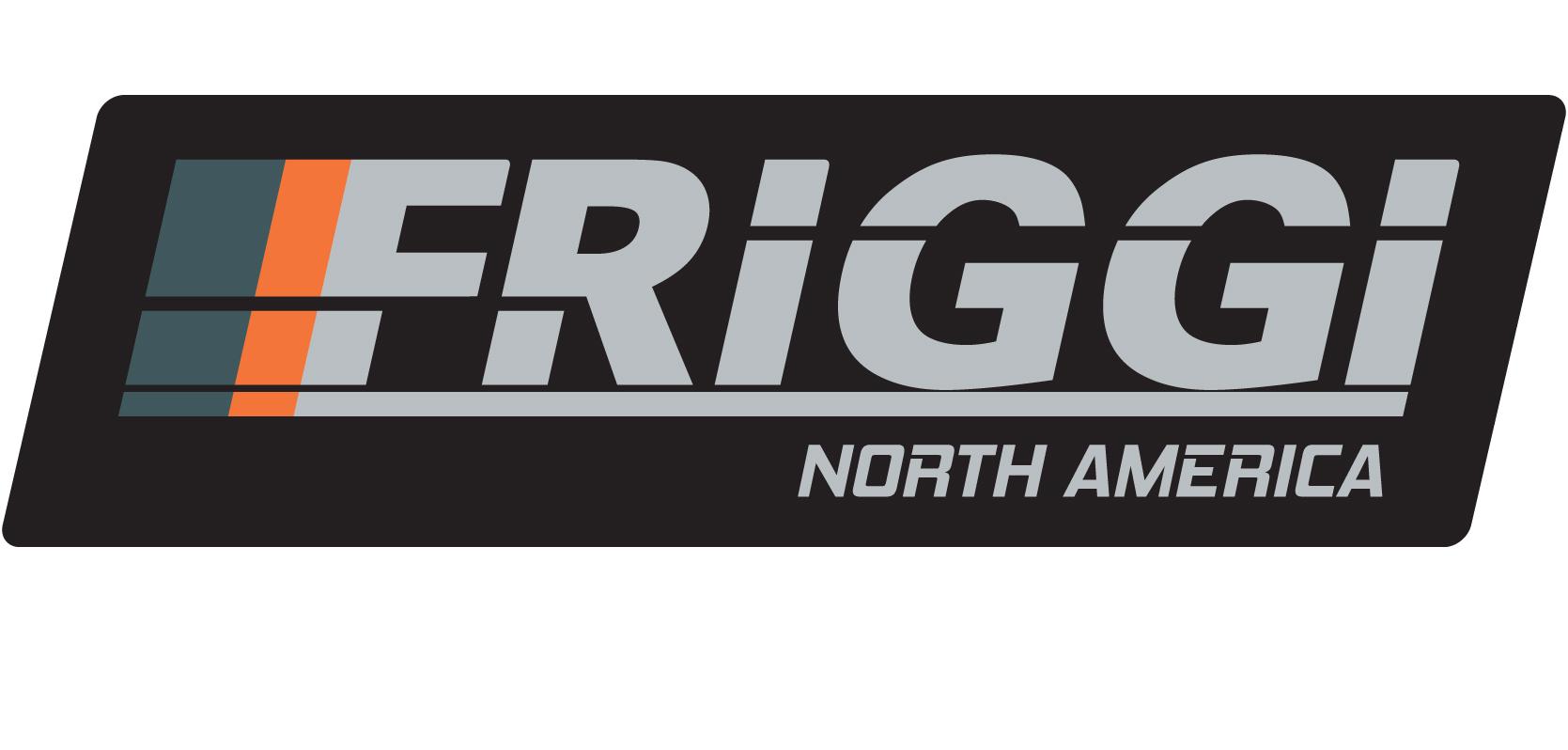 logo FRIGGI-NA