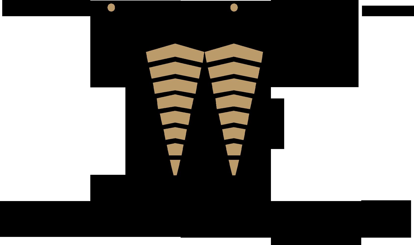Watry Design logo on light process