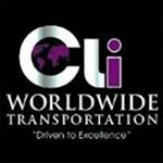 cli_worldwide_2020
