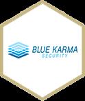bluekarma web logo