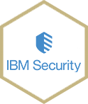 ibmsecurity web logo
