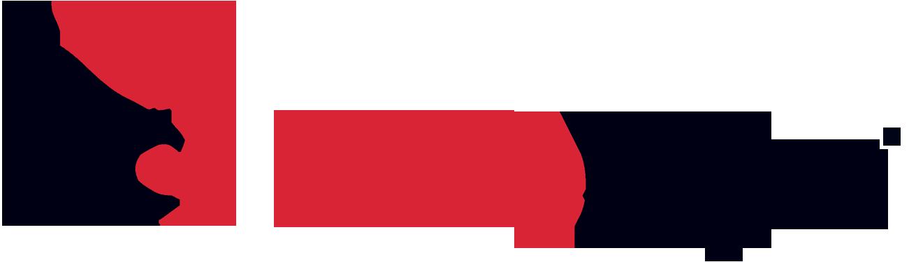 FireEye_logo_RGB-1