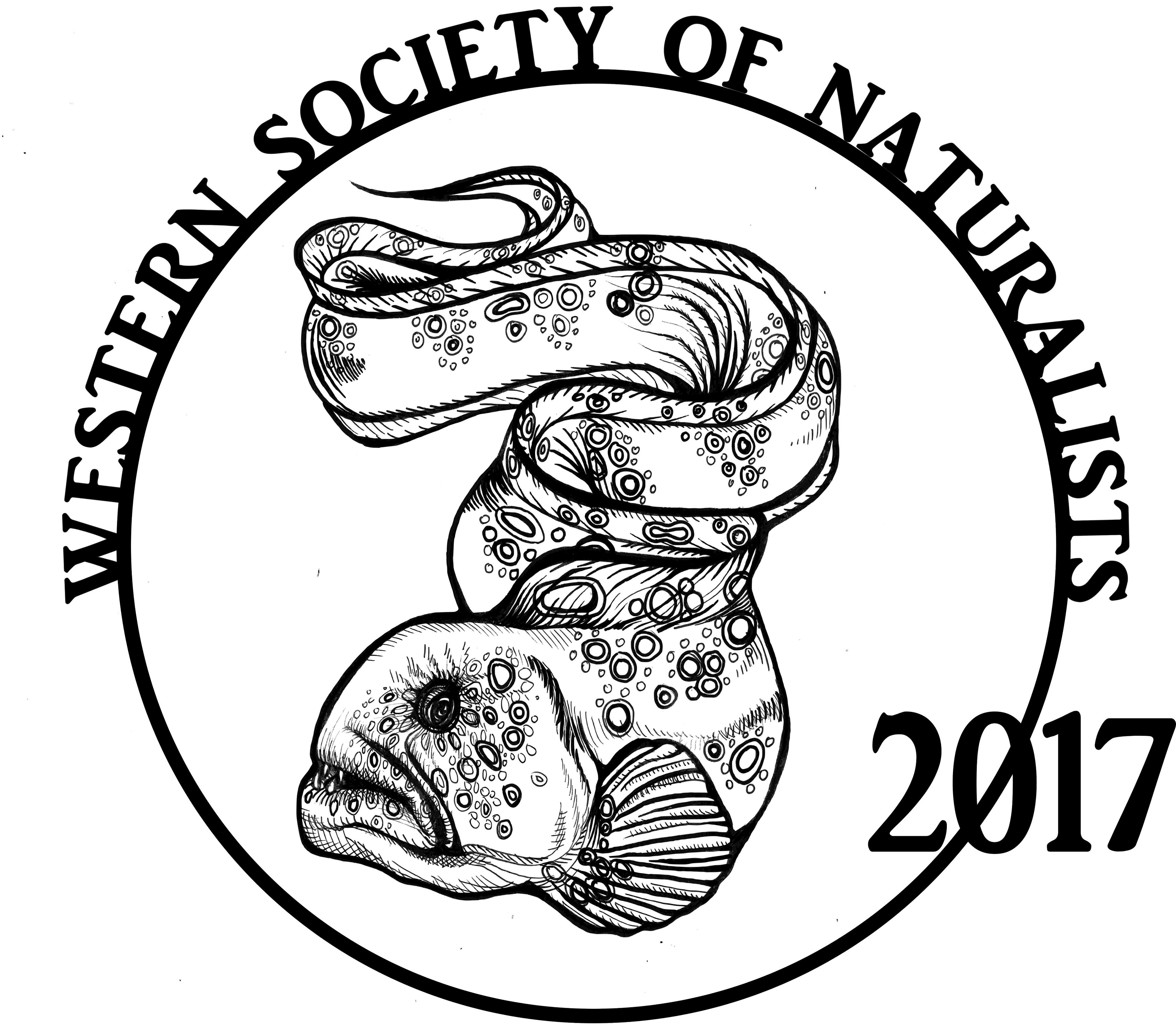WSN_2017_Logo