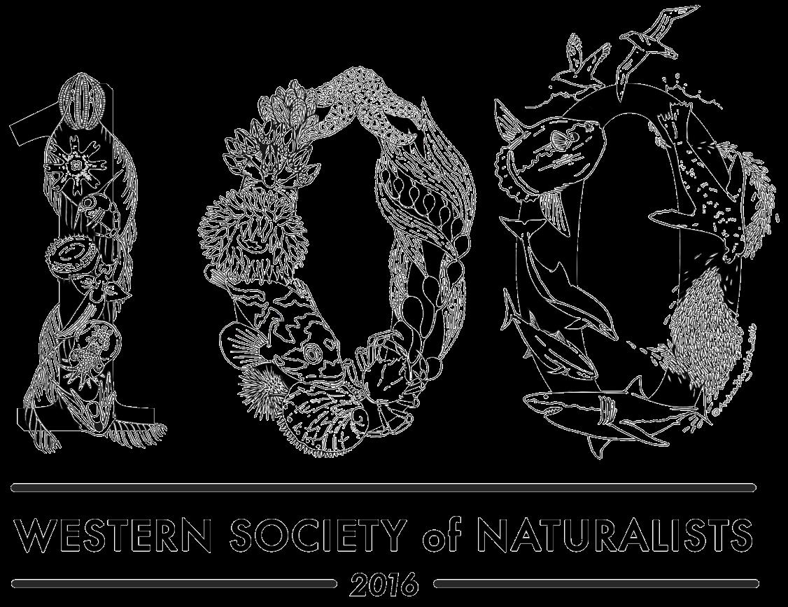 wsn 2016 logo