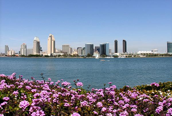 Downtown-Skyline-in-Spring--Courtesy-Joanne-DiBona