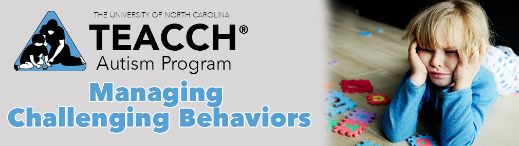 Managing Challenging Behaviors Using Structured TEACCHing (Greenville)