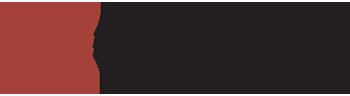 logo_bergman