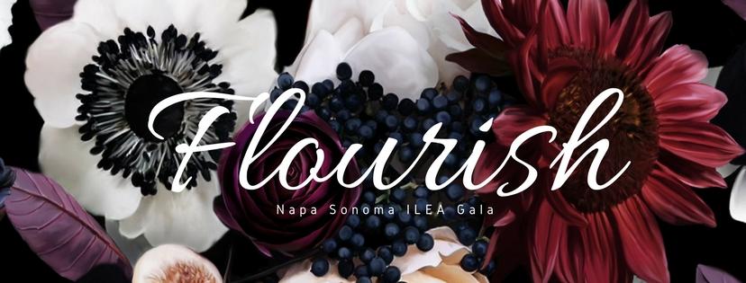 ILEA Napa-Sonoma April 2018 Gala