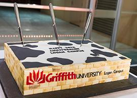 270-193_Logan Campus Cake