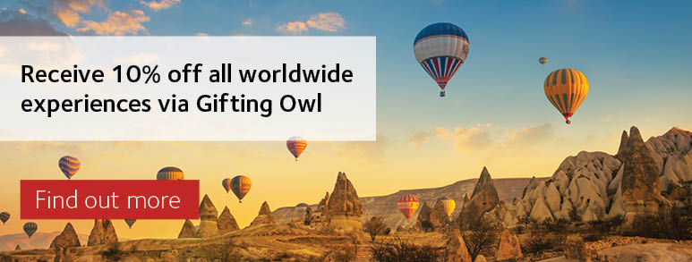 Gifting owl options
