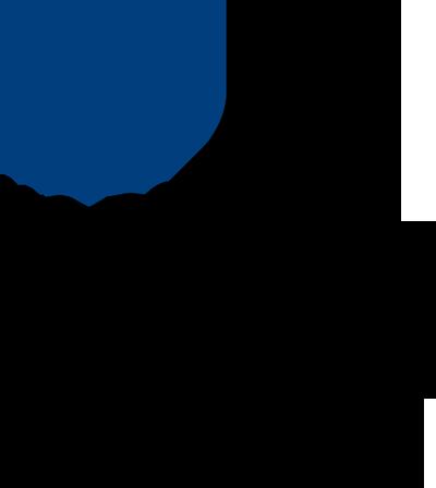 DOT-FTA SHORT signature blue and black