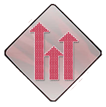 IDS Logo Diamond No Background