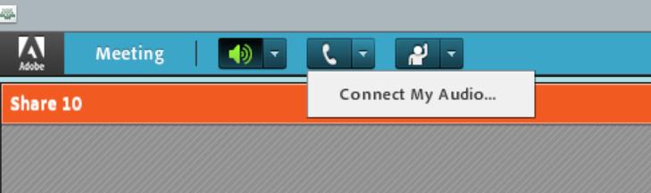 WebinarReConnectAudio1