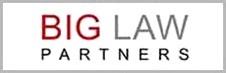 Big Law Partners